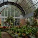 Winter Gardens, Auckland Domain