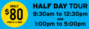 Half Day Tour updated
