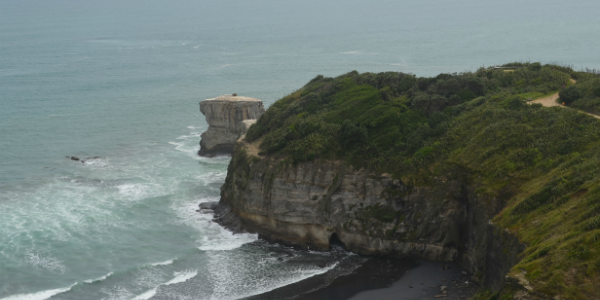 Muriwai, outskirts of Auckland